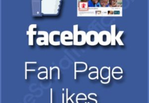 i will give you 1,000 facebook fan page likes