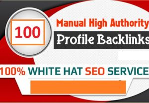 Create 100 Profile Backlink For You From High DA/PA Sites