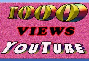 Add 1000 youtube video views non drop life time garenteed