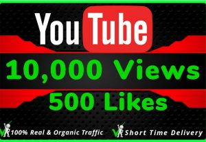 I Will Do HQ NON DROP 10000 Youtube Views and 500 likes