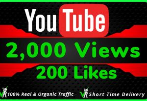 I Will Do HQ NON DROP 2000 Youtube Views and 200 likes
