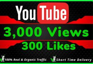 I Will Do HQ NON DROP 3000 Youtube Views and 300 likes