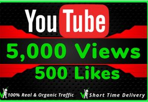 I Will Do HQ NON DROP 5000 Youtube Views and 500 likes