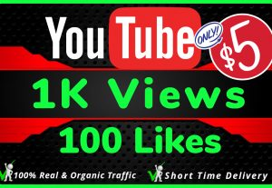 I Will Do HQ NON DROP 1000 Youtube Views and 100 likes