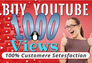 I will provide you 1000 YOUTUBE organic views
