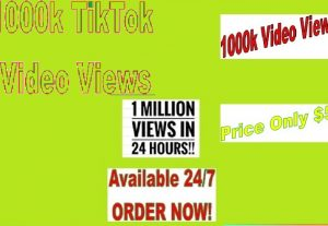 I will give you 1000k TikTok Video Views for Videos within 24 hours