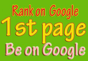 Google 1st page with in 6 month – Guaranteed project