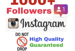 Get 1000+ Followers on INSTAGRAM ! Non Drop & High Quality ! ( If drop , 30 days refill guaranteed)