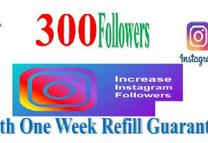 I will Give You 300 Instagram Followers or 150k Video Views in your Link