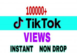 I will provide 100000+ Tik Tok views instantly & non drop