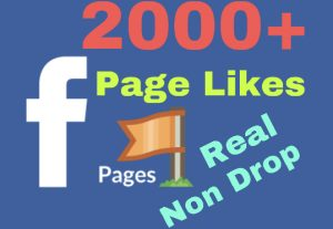 I will add 2000+ Facebook Fan Page Likes !! Real & Organic !!