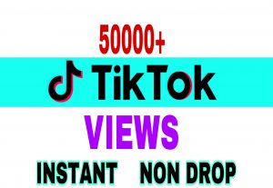 I will provide 50000+ Tik Tok views instantly & non drop