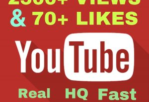 I will add 2500+ VIEWS & 200+ Likes on YouTube ! Real , Fast & High Quality !