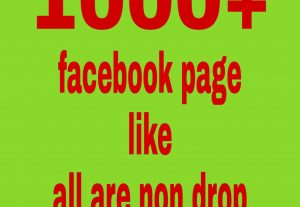 1000 facebook page like all are non drop