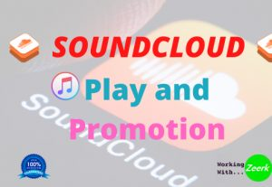 I will do your soundcloud promotion