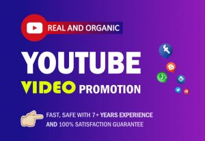 Do organic YouTube video promotion Service