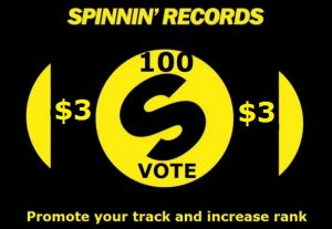 Reach best 100 Spinnin records talent pool votes on your remix