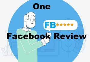 A five star USA Facebook Review in 24hours
