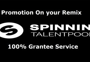 Best way to promote your spinnin records track remix music  votes
