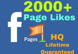 Get 2000+  Facebook Fan page likes!!! super High Quality