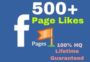 I will provide you 500+ facebook page likes instantly!!!!