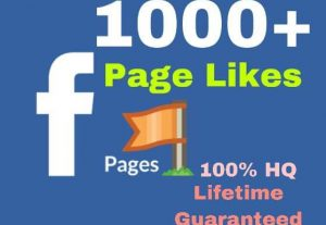 I will provide 1000+ facebook page likes instantly!!!