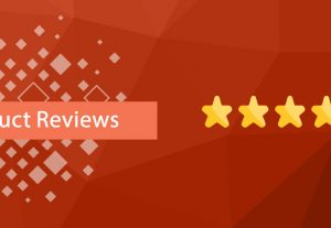 provide you 10 permanent google review