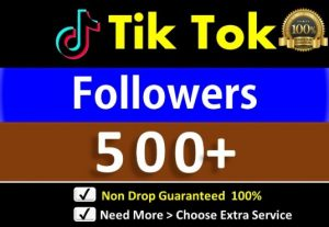 Provide Instant 500+ Tik Tok Followers, Real Users Guaranteed
