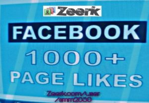 FACEBOOK 2000 Page Like NON DROP GUARANTEED AND INSTANT START