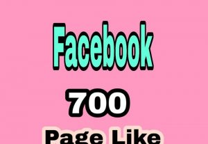 700+ FACEBOOK PAGE LIKES WITHIN 12 HOURS REAL ACTIVE USER AND NON DROP GUARANTEED