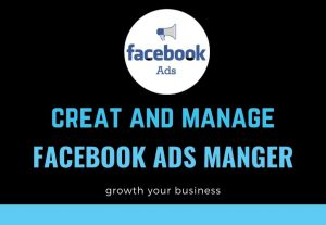 I Will Setup And Manage Your Facebook Ads Campaign with professionally.
