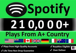 Get 210,000+ ORGANIC Plays From HQ Account of Top Country USA – Europe, Permanent Guaranteed