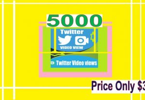 I will Give You 5k Twitter Video Views for Video Promotion