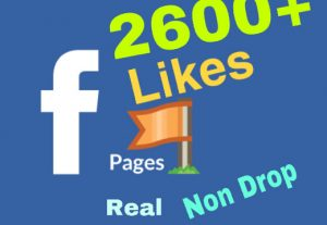 I will add 2600+ Facebook Page likes ! Real & Non Drop !