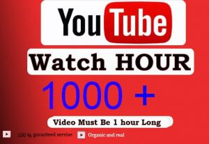 Get 1000+ Hour Youtube Watch Time,Life Time Guranteed Service For 15$