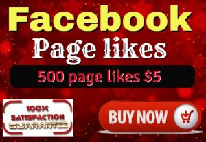 I Will Give You Real 500 Facebook Page Likes Lifetime Guaranteed