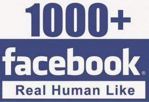 I will provide you 1000+facebook fan page like guranteed+30 days refill
