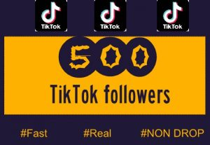 500+ TIKTOK FOLLOWERS NON DROP AND HIGH QUALITY INSTANT START
