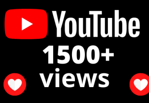 I will Add High Quality Non Drop 1k YouTube views +1500 minute watch time
