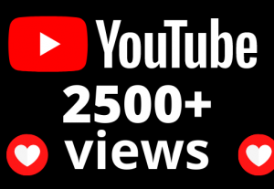 I will add 2500+ views and 42 hours watch time