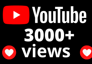 I will add 3000+ views and 45 hours watch time