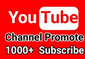 I will give 1000+ YouTube Channel Subscribe, Non Drop Guaranteed
