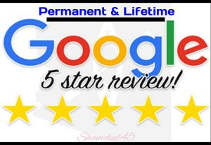 I will send you 15 permanent google review for your website