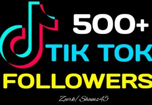 Get 500+ TikTok Organic Followers, Real Active User, High Quality, Nondrop, Lifetime User Guaranteed