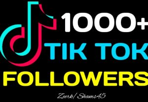 Add 1000+ TikTok Organic Followers, Real Active User, High Quality, Non drop, Lifetime User Guaranteed