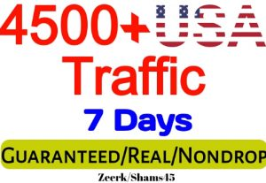 Get 4500+ USA Organic Web Traffic For Your Website, organic and real, active user, Visitors guaranteed