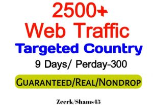 Get 2500+ Country Targeted Organic Web Traffic For Your Website,(per day-300, 9 days) organic and real, active user, Real Visitors guaranteed