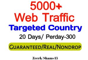 Get 5000+ Country Targeted Organic Web Traffic For Your Website,(per day-300, 20 days) organic and real, active user, Real Visitors guaranteed