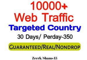 Get 10000+ Country Targeted Organic Web Traffic For Your Website,(per day-350, 30 days) organic and real, active user, Real Visitors guaranteed