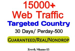 Get 15000+ Country Targeted Organic Web Traffic For Your Website,(per day-500, 30 days) organic and real, active user, Real Visitors guaranteed